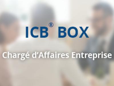 ICB® BOX – Chargé d'Affaires Entreprise