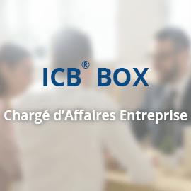 ICB_Box_Entreprise_270x270